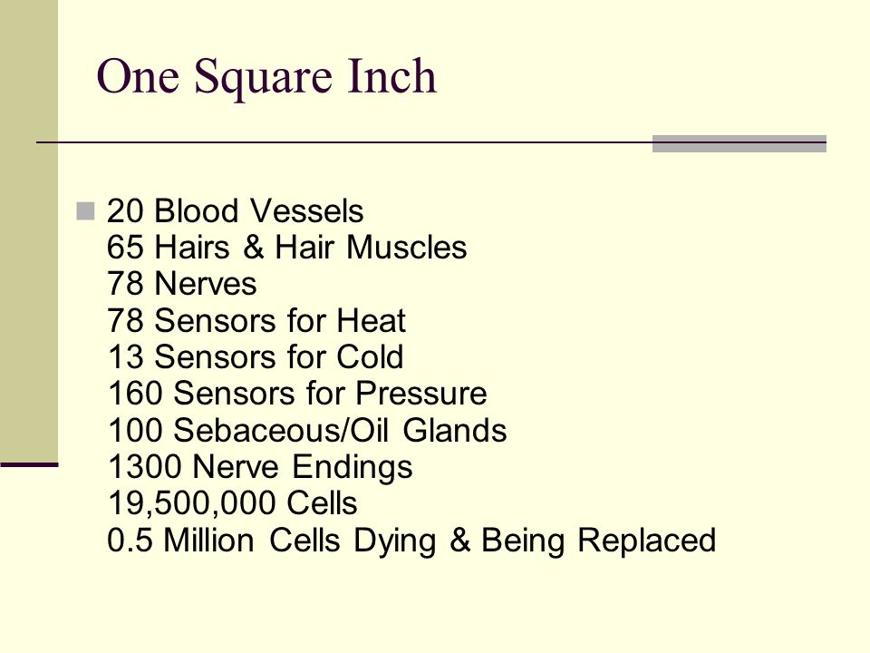 One Square Inch