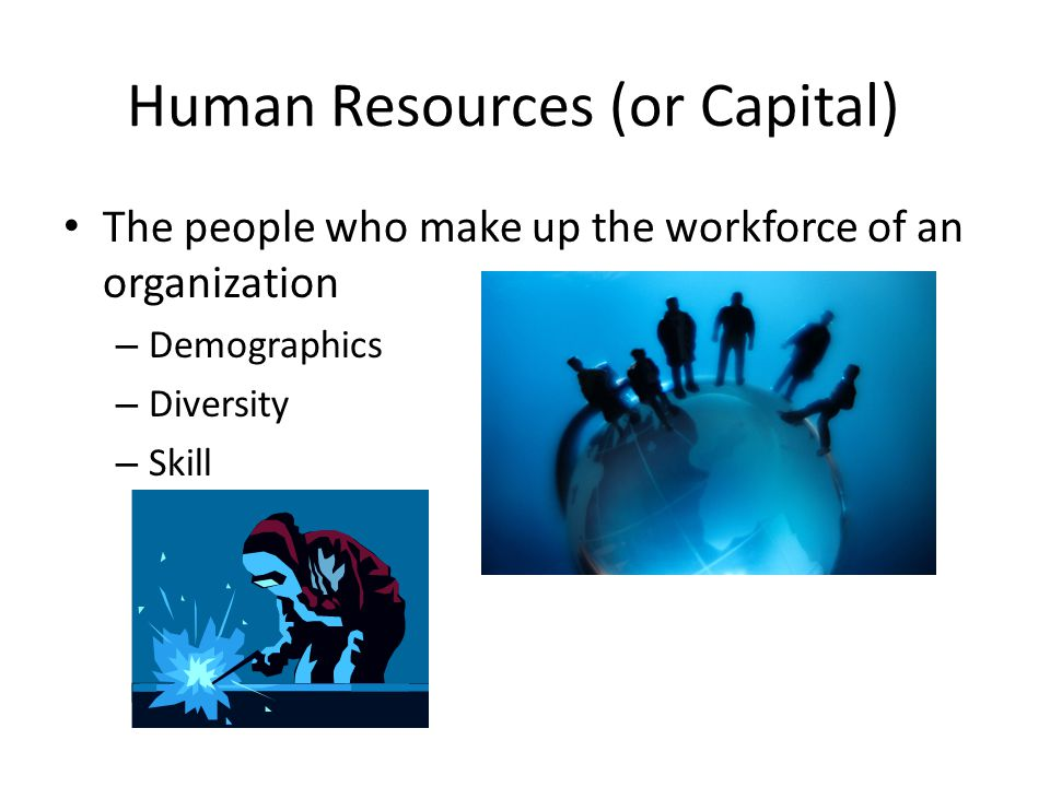 Human Resources (or Capital)