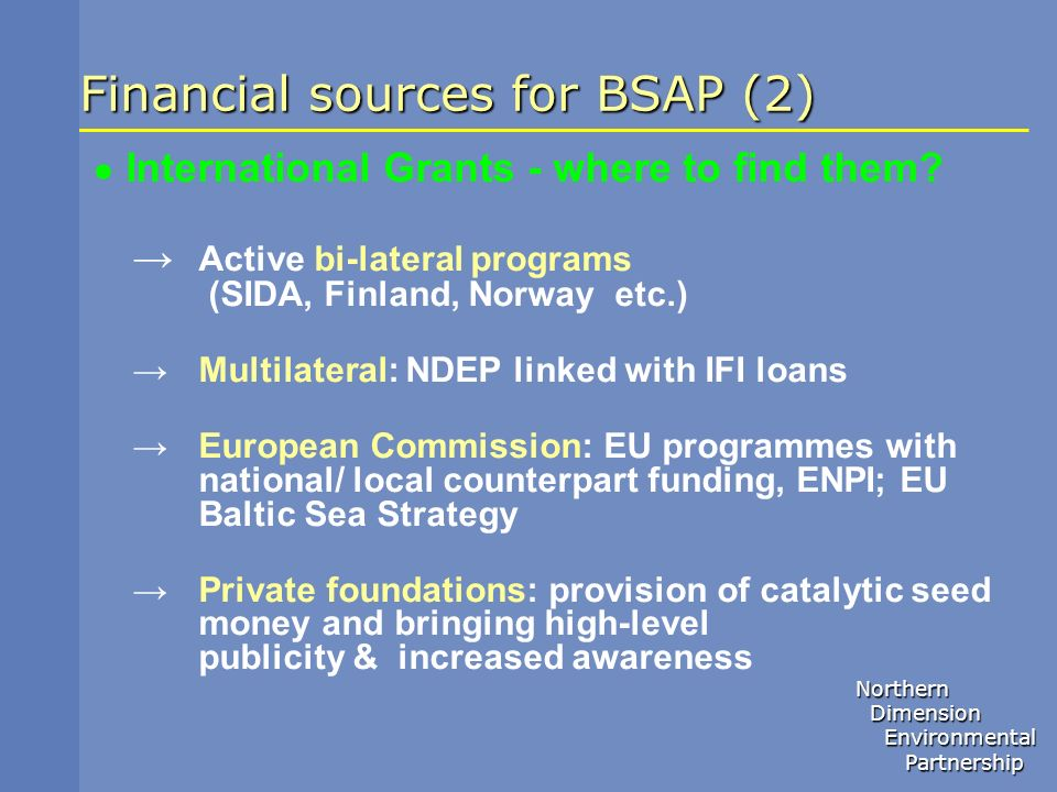 Financial sources for BSAP (2)