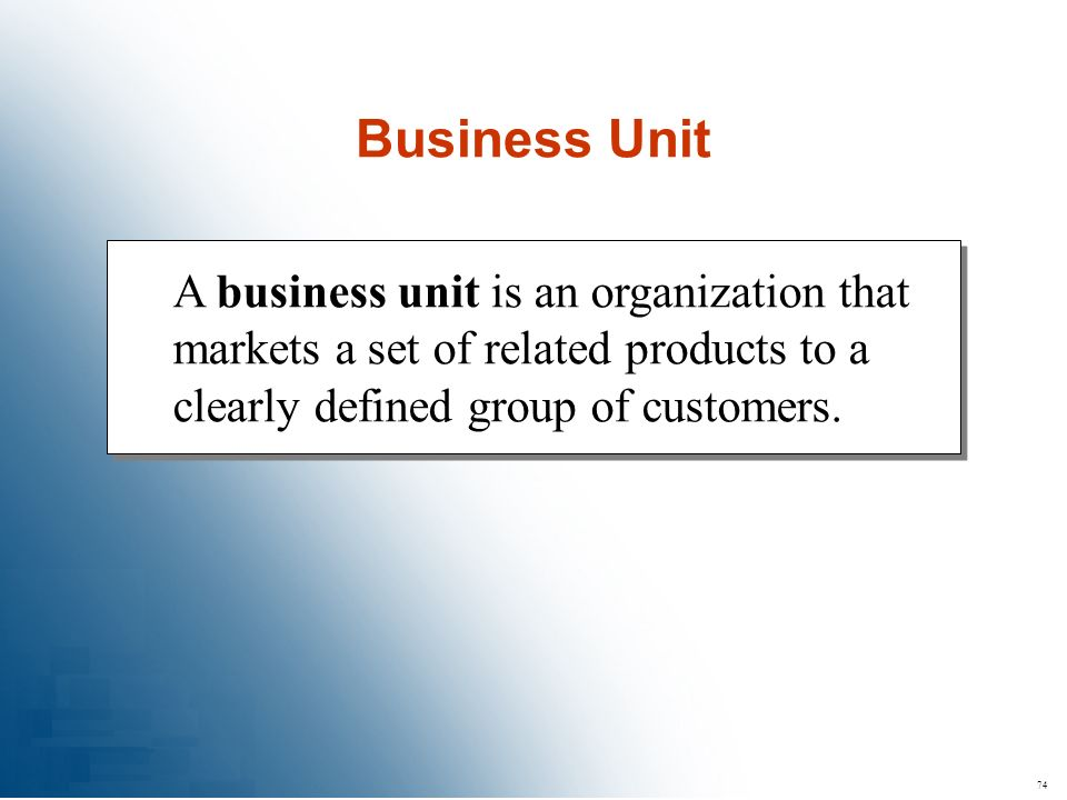 Business Unit A business unit is an organization that markets a set of related products to a clearly defined group of customers.
