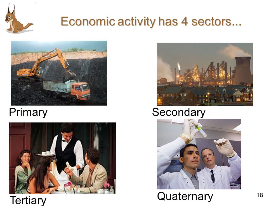 Economic activity has 4 sectors...