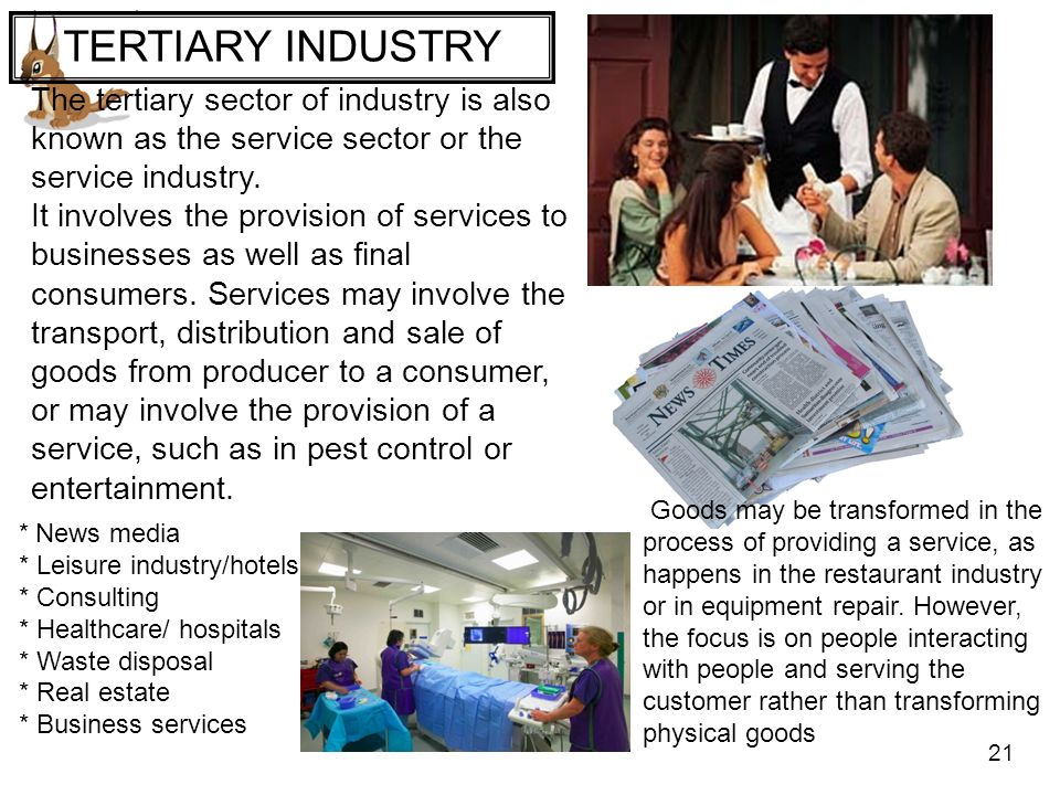 TERTIARY INDUSTRY The tertiary sector of industry is also known as the service sector or the service industry.