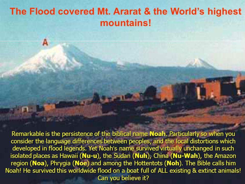 The Flood covered Mt. Ararat & the World's highest mountains!