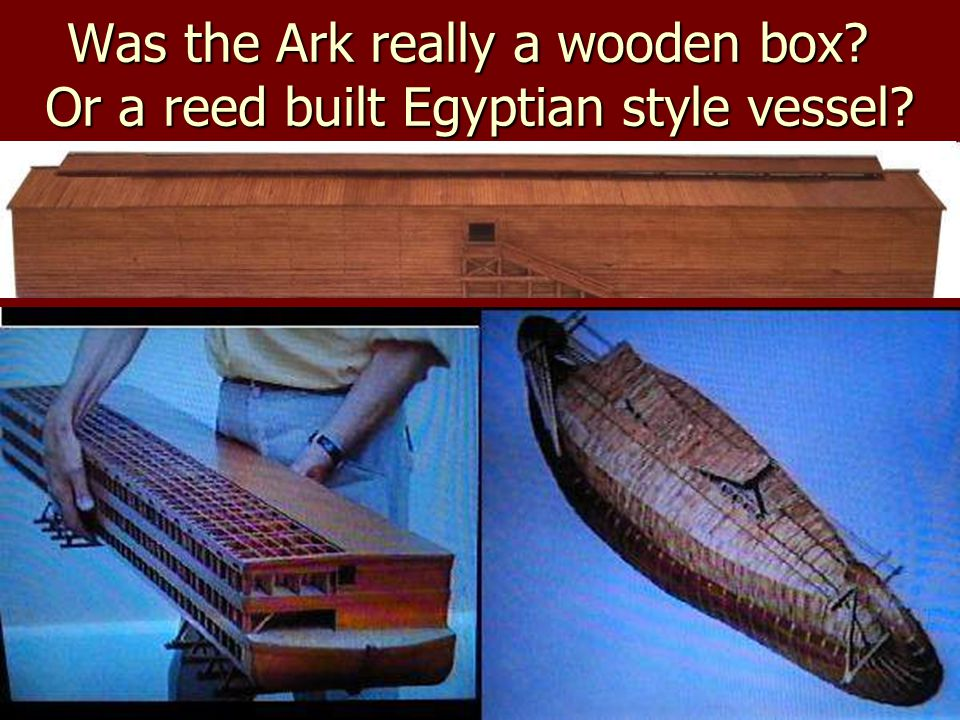 Was the Ark really a wooden box Or a reed built Egyptian style vessel