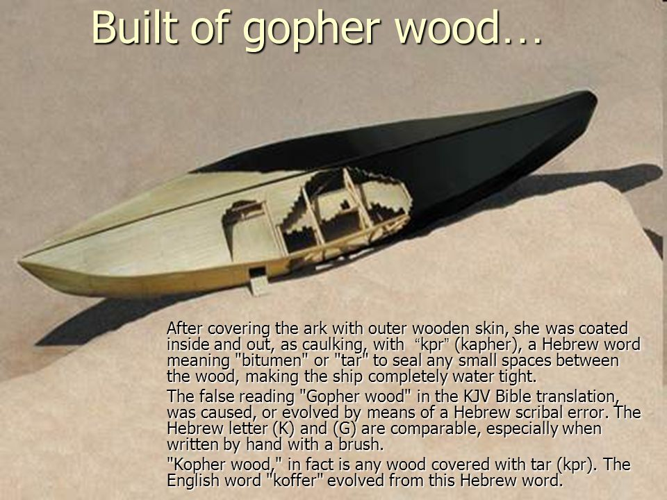 Built of gopher wood…