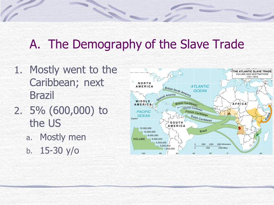 A. The Demography of the Slave Trade
