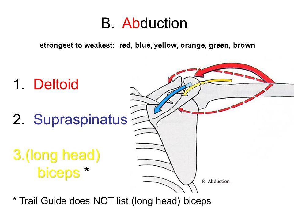 B. Abduction 1. Deltoid 2. Supraspinatus (long head) biceps *