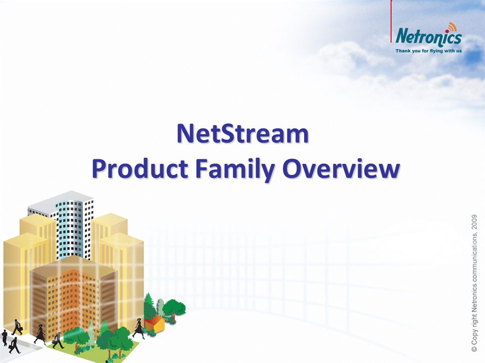 NetStream Product Family Overview
