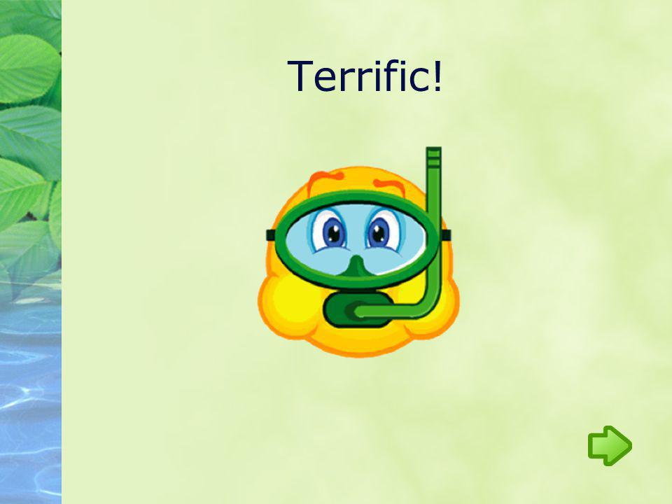 Terrific!