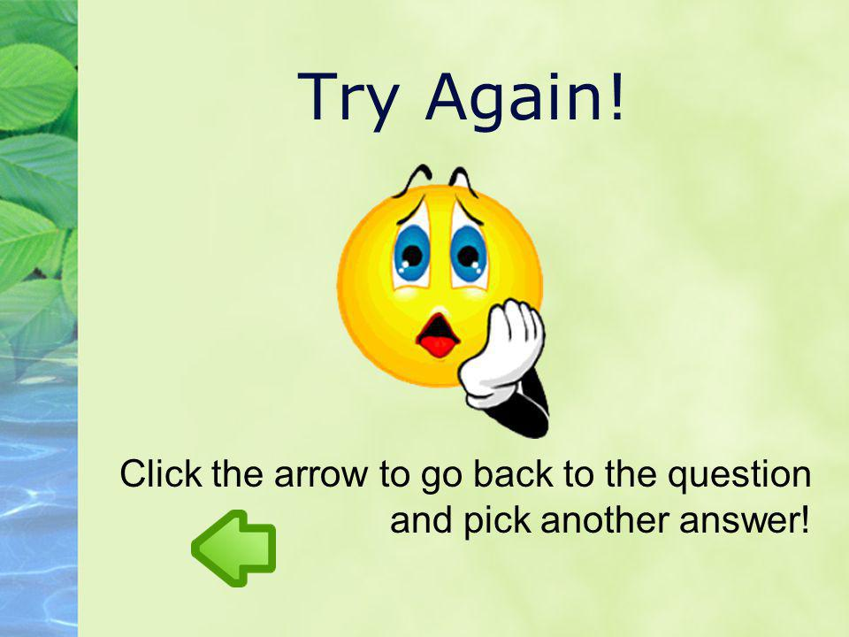 Try Again! Click the arrow to go back to the question and pick another answer!