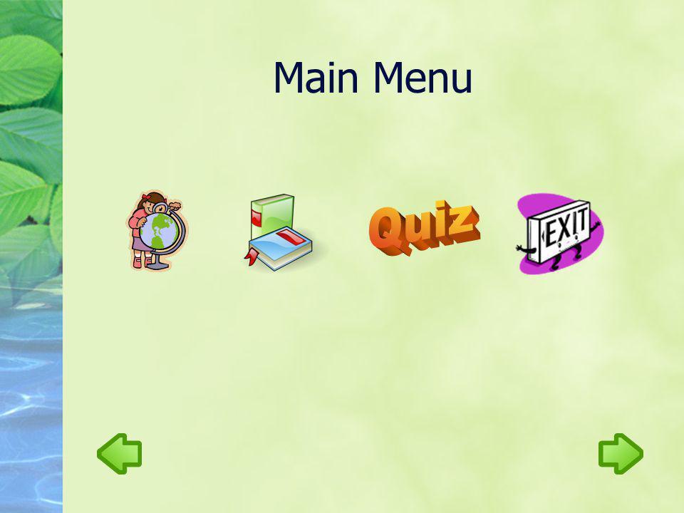 Main Menu Quiz