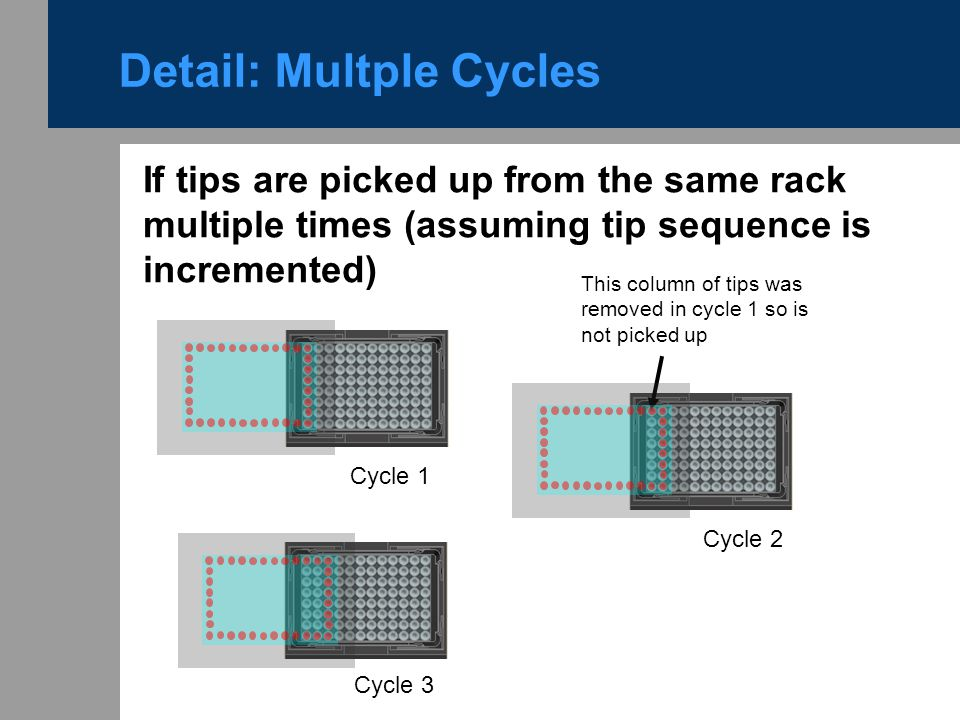 Detail: Multple Cycles
