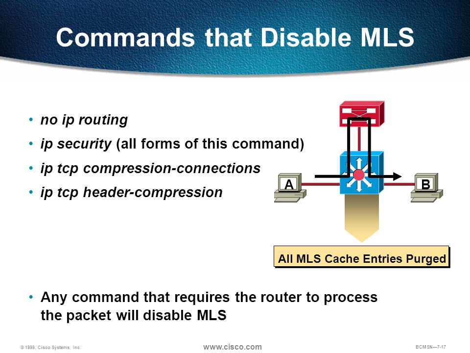 Commands that Disable MLS
