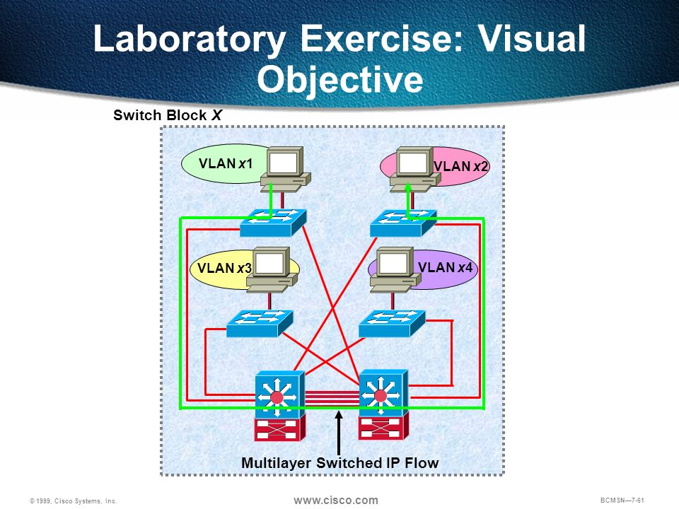 Laboratory Exercise: Visual Objective