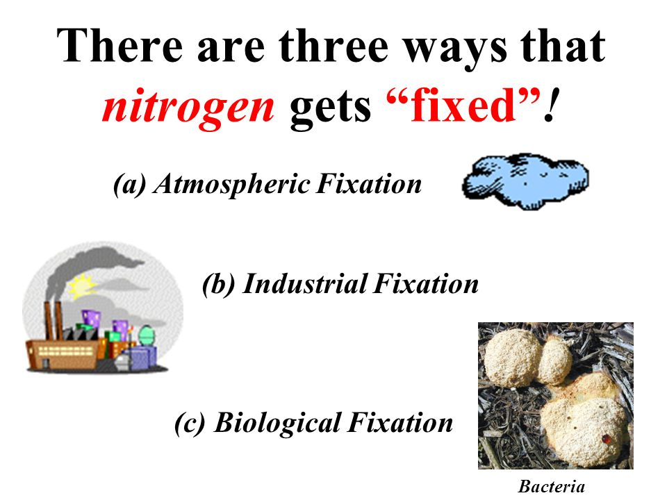 There are three ways that nitrogen gets fixed !