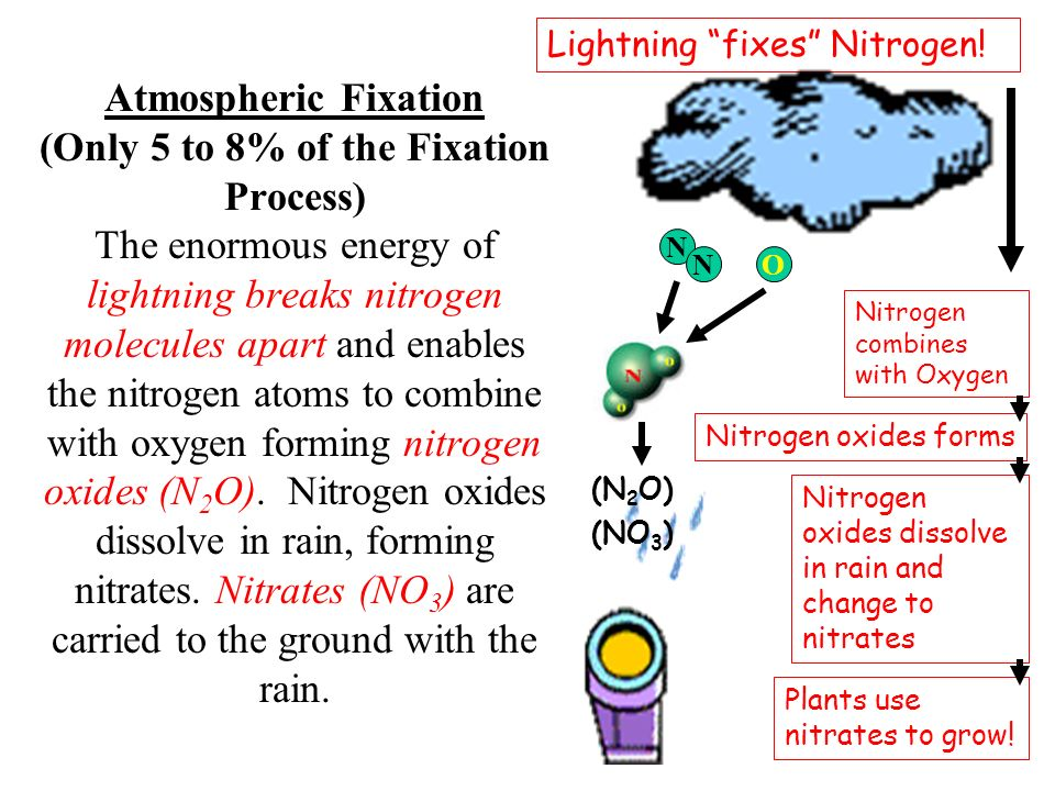 Lightning fixes Nitrogen!
