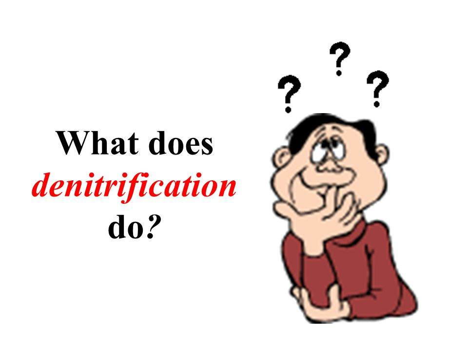 What does denitrification do