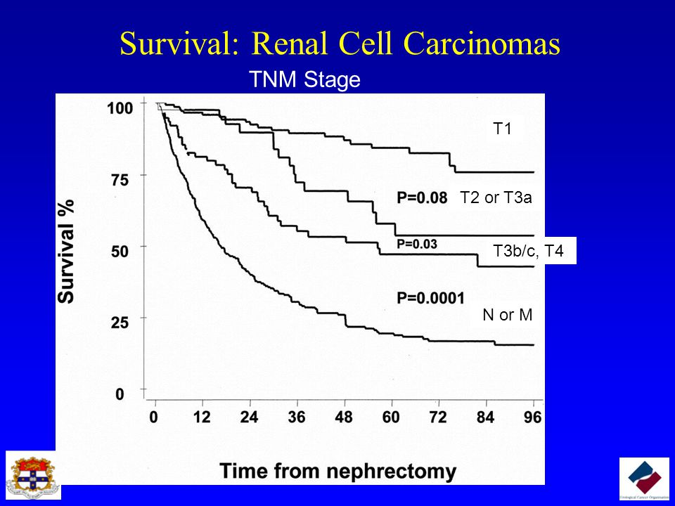 Survival: Renal Cell Carcinomas
