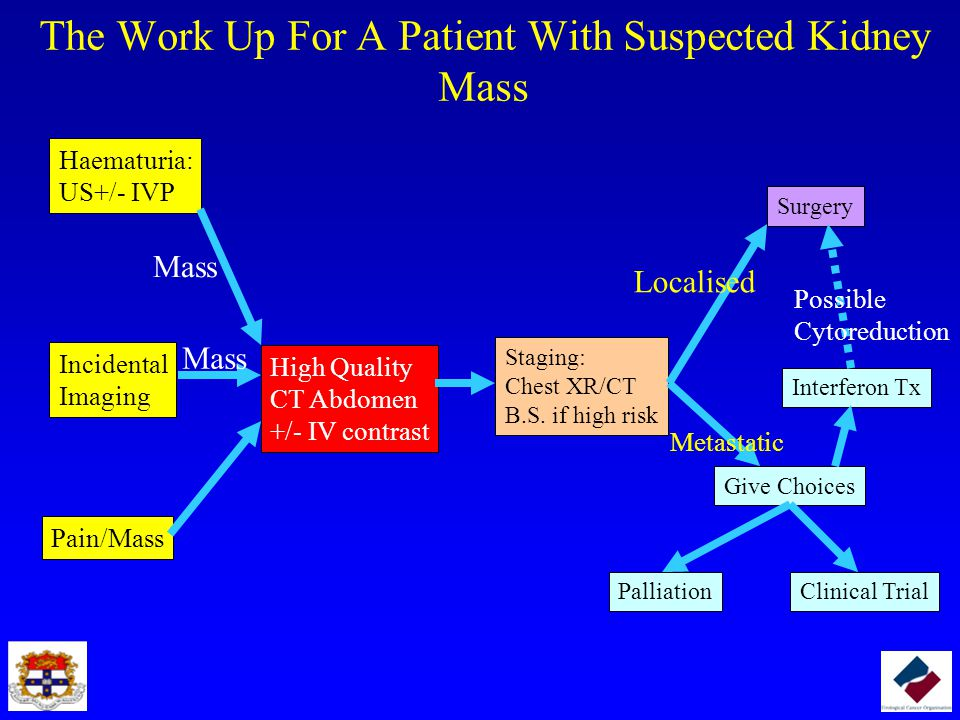 The Work Up For A Patient With Suspected Kidney Mass