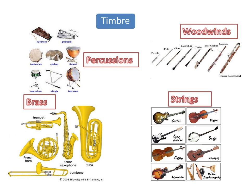 Timbre Woodwinds Percussions Strings Brass