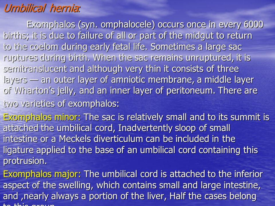 Asombroso Umbilical Hernia Anatomy And Physiology Adorno - Anatomía ...