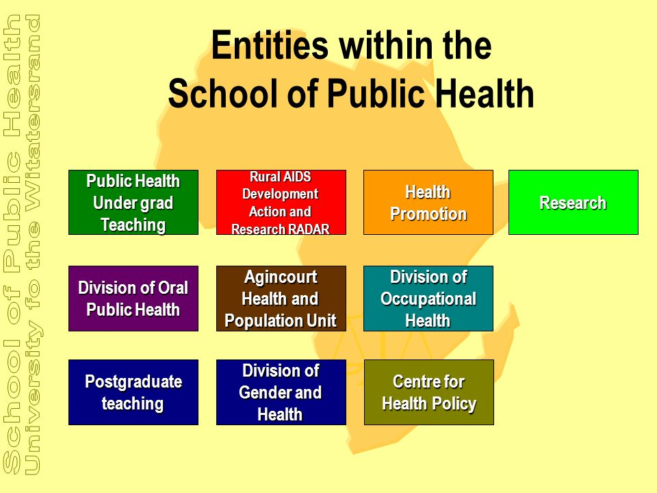 Entities within the School of Public Health