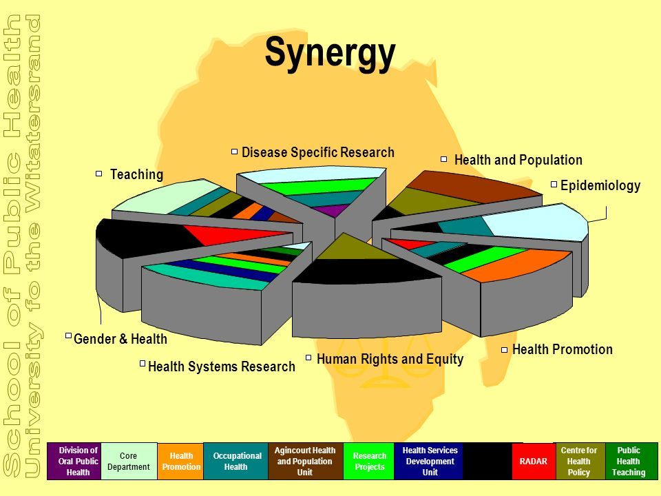 Synergy Disease Specific Research Health and Population Teaching