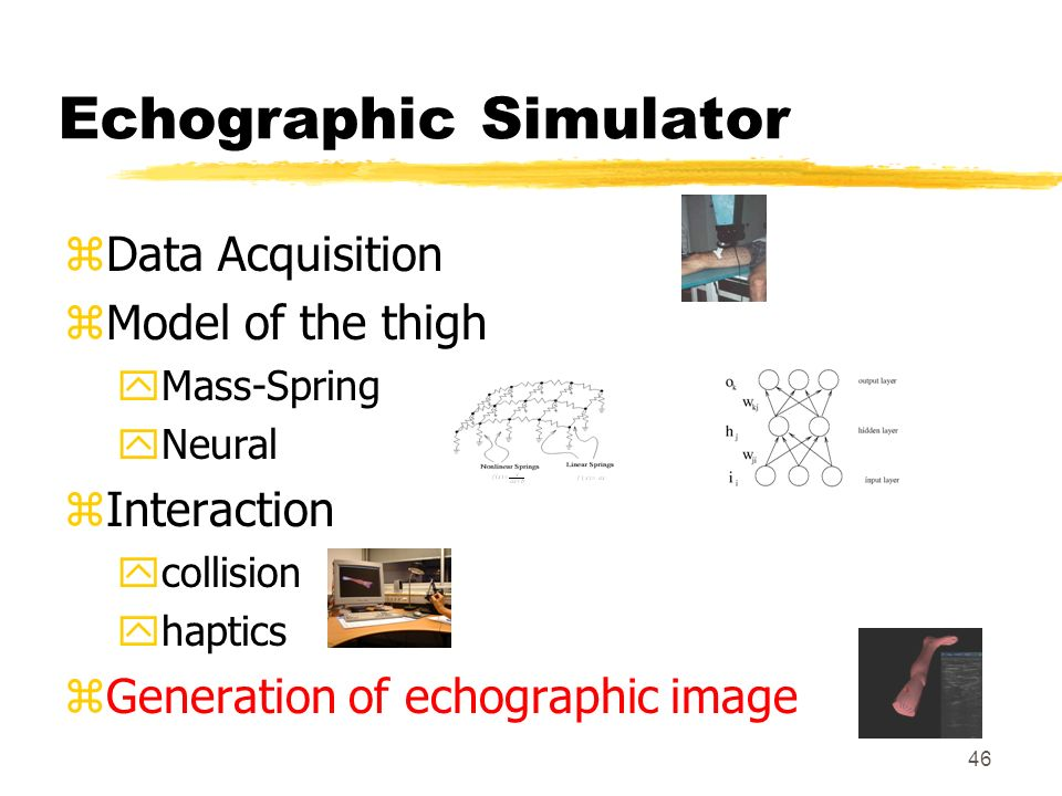 Echographic Simulator