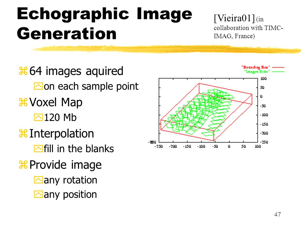 Echographic Image Generation