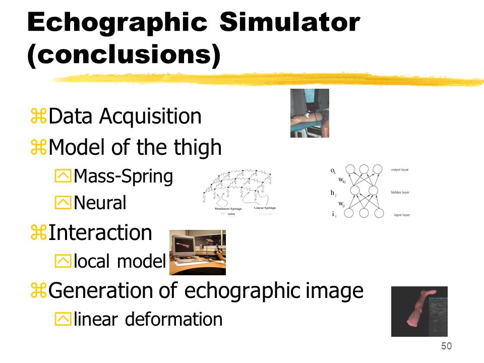 Echographic Simulator (conclusions)
