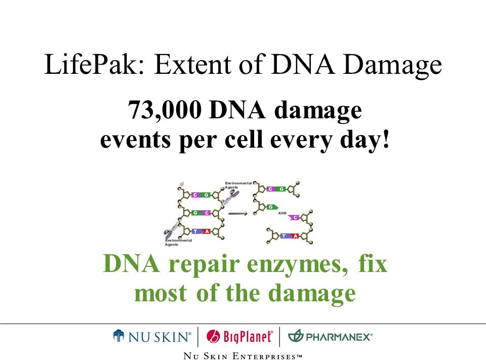 LifePak: Extent of DNA Damage