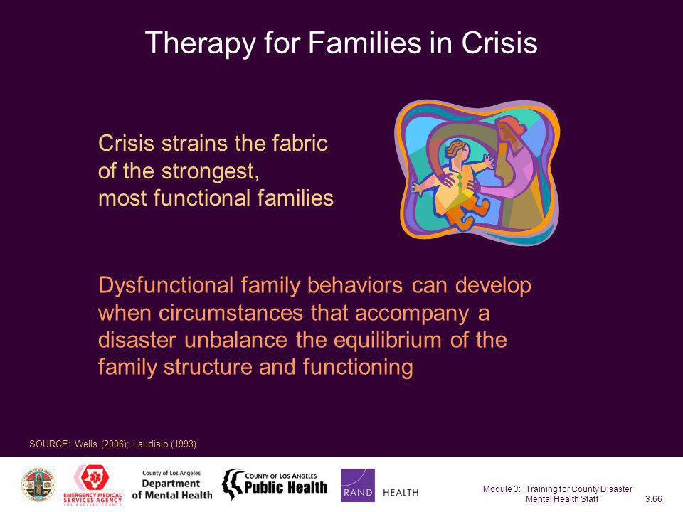 Therapy for Families in Crisis