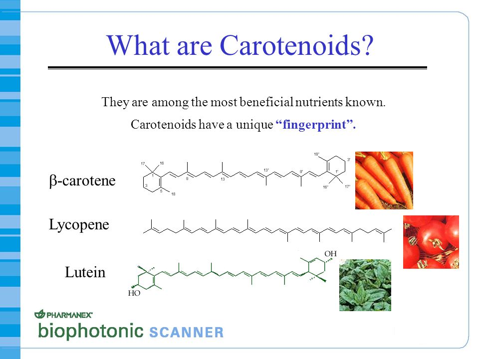 What are Carotenoids b-carotene Lycopene Lutein