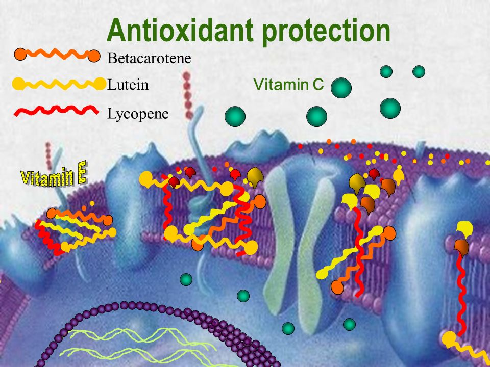 Antioxidant protection