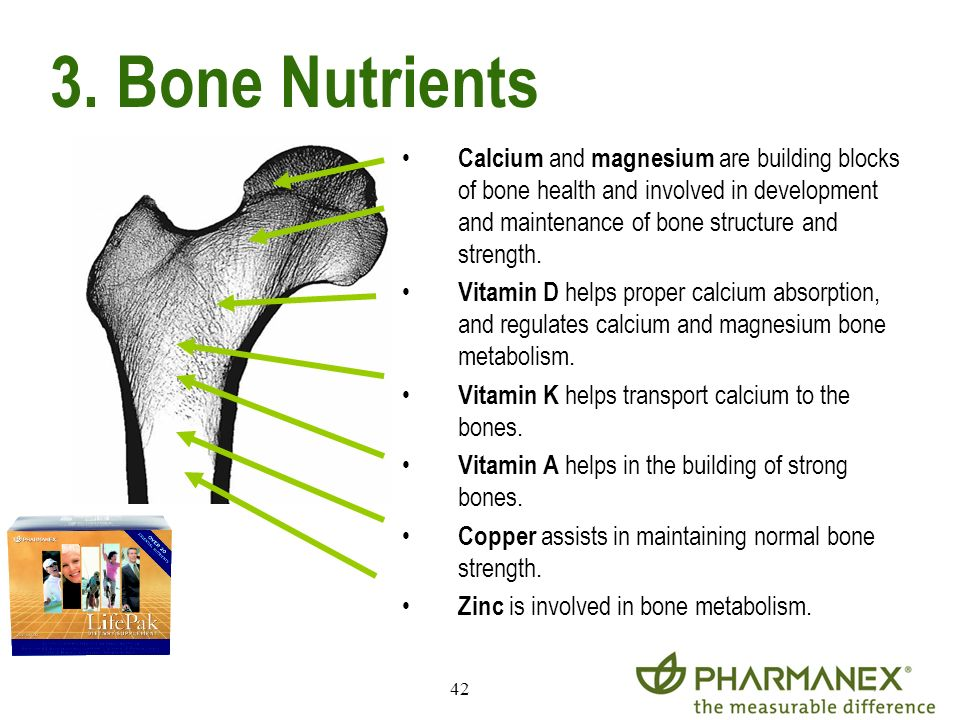3. Bone Nutrients
