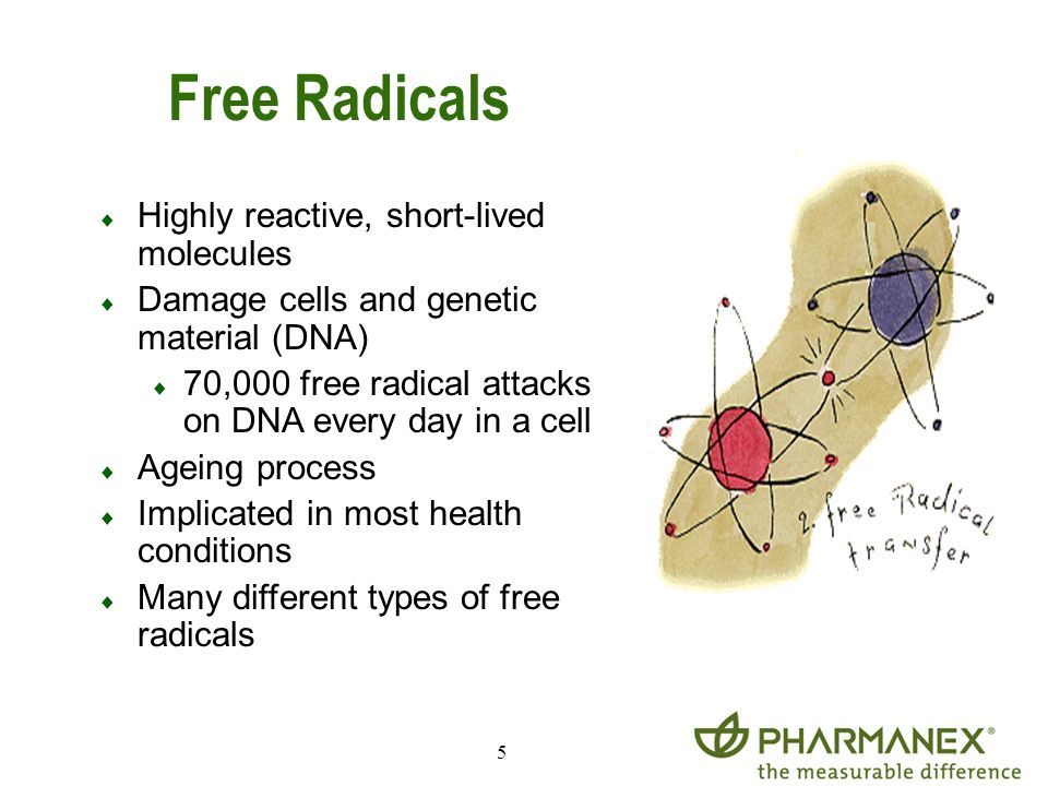 Free Radicals Highly reactive, short-lived molecules