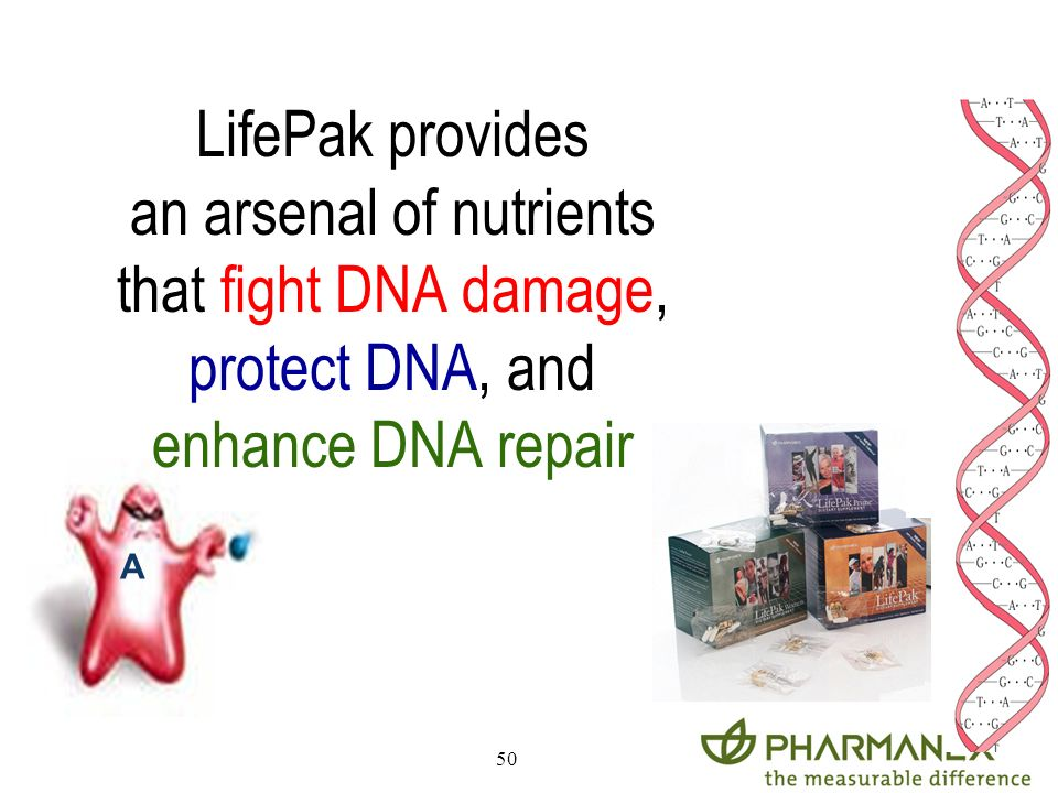 an arsenal of nutrients that fight DNA damage,
