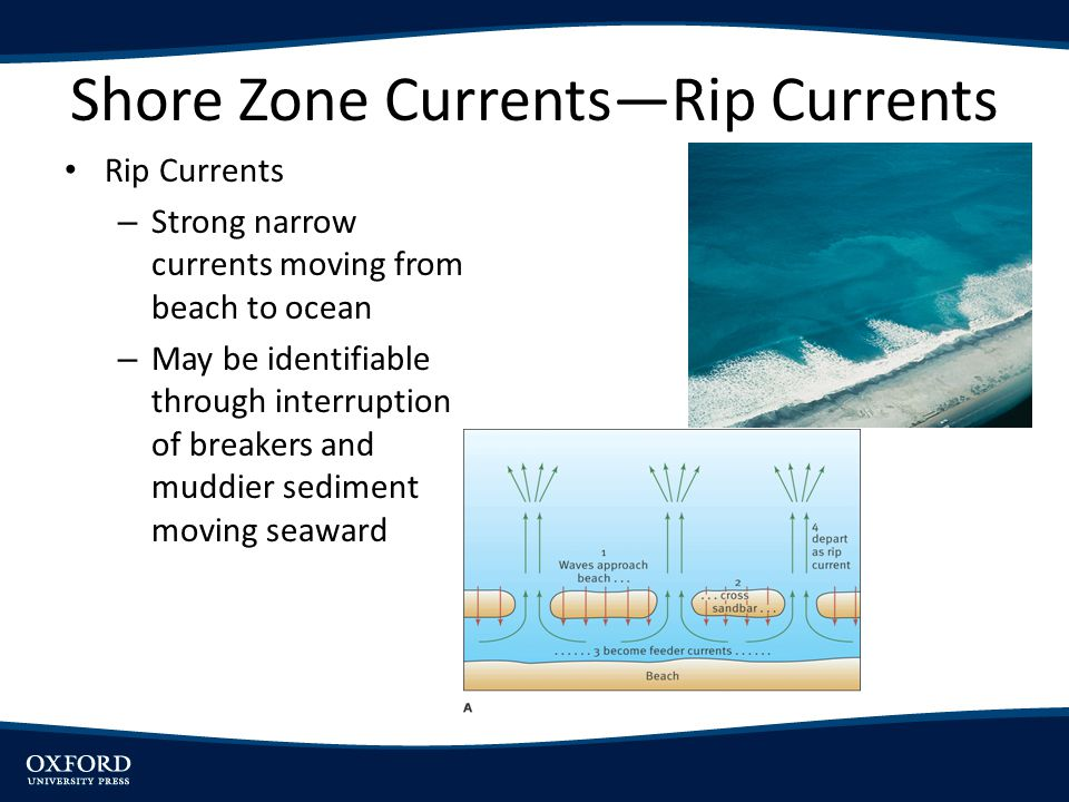 Shore Zone Currents—Rip Currents