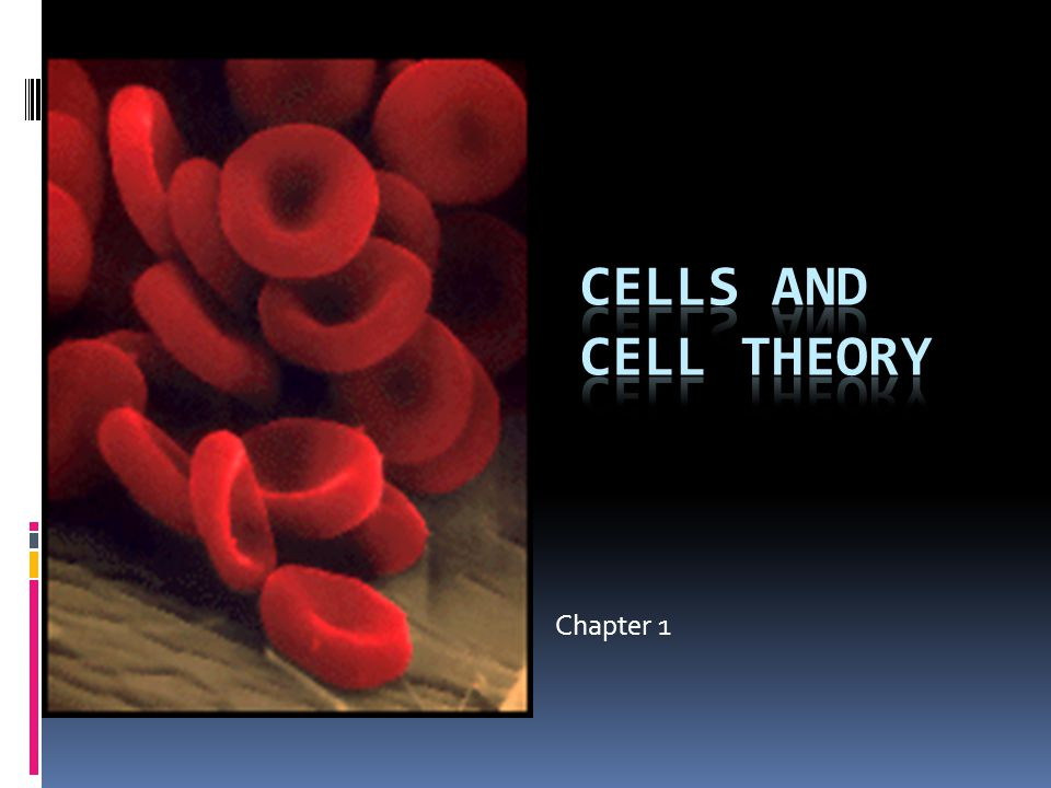 Cells and Cell Theory Chapter 1