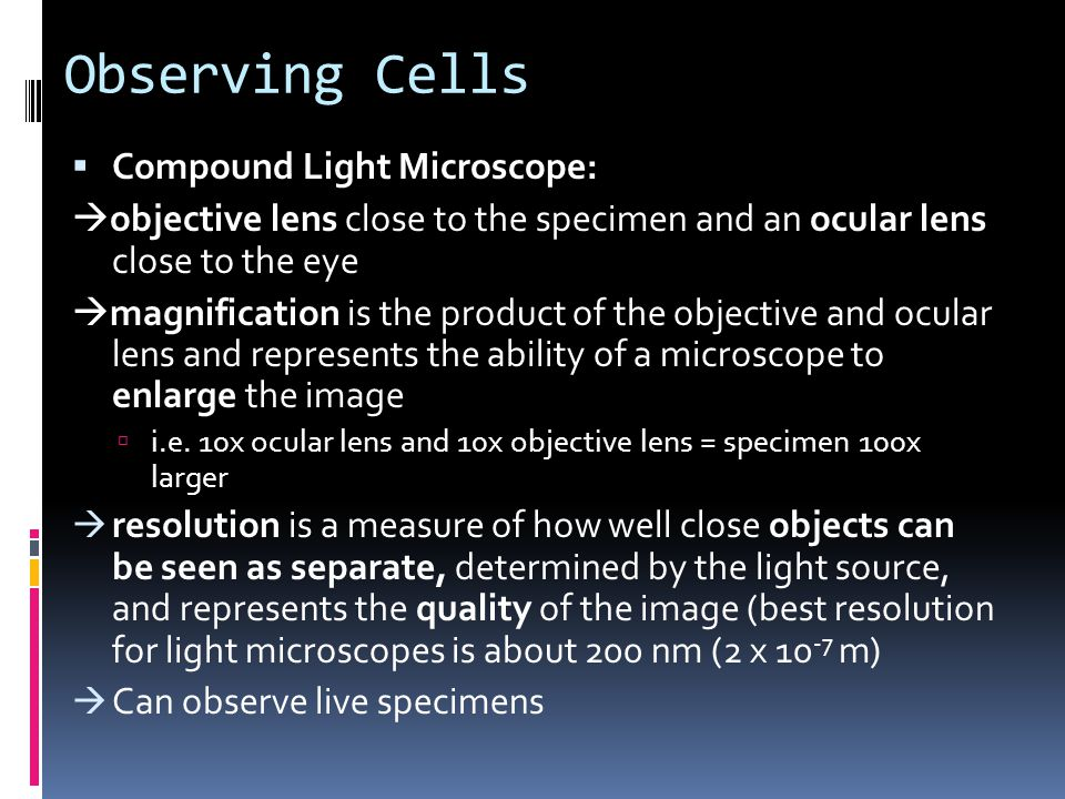 Observing Cells Compound Light Microscope: