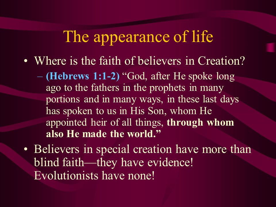 The appearance of life Where is the faith of believers in Creation