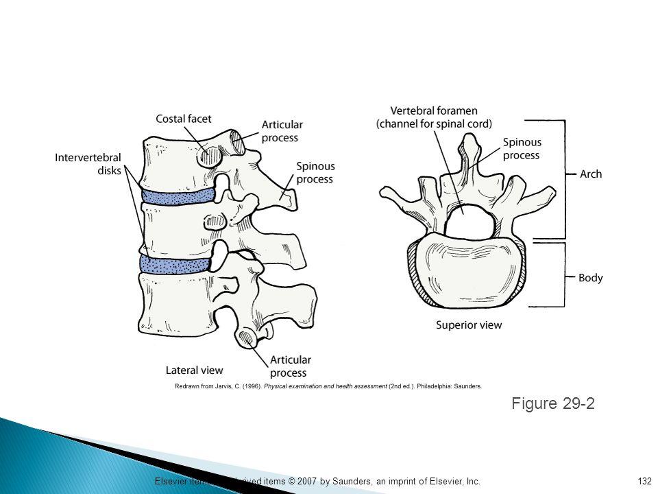 Figure 29-2