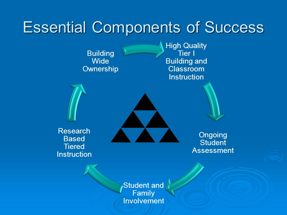 Essential Components of Success