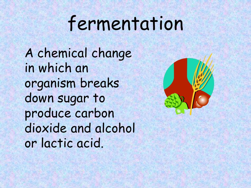 fermentation A chemical change in which an organism breaks down sugar to produce carbon dioxide and alcohol or lactic acid.