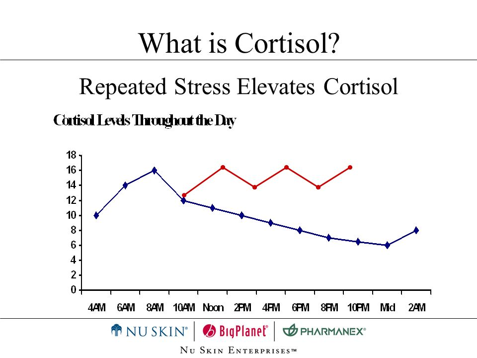 Repeated Stress Elevates Cortisol