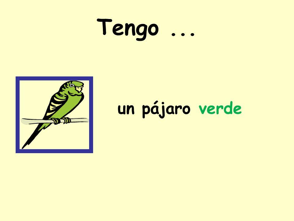 Tengo ... un pájaro verde