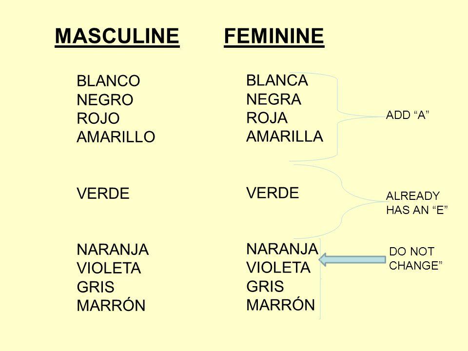 MASCULINE FEMININE BLANCO BLANCA NEGRO NEGRA ROJO ROJA AMARILLO