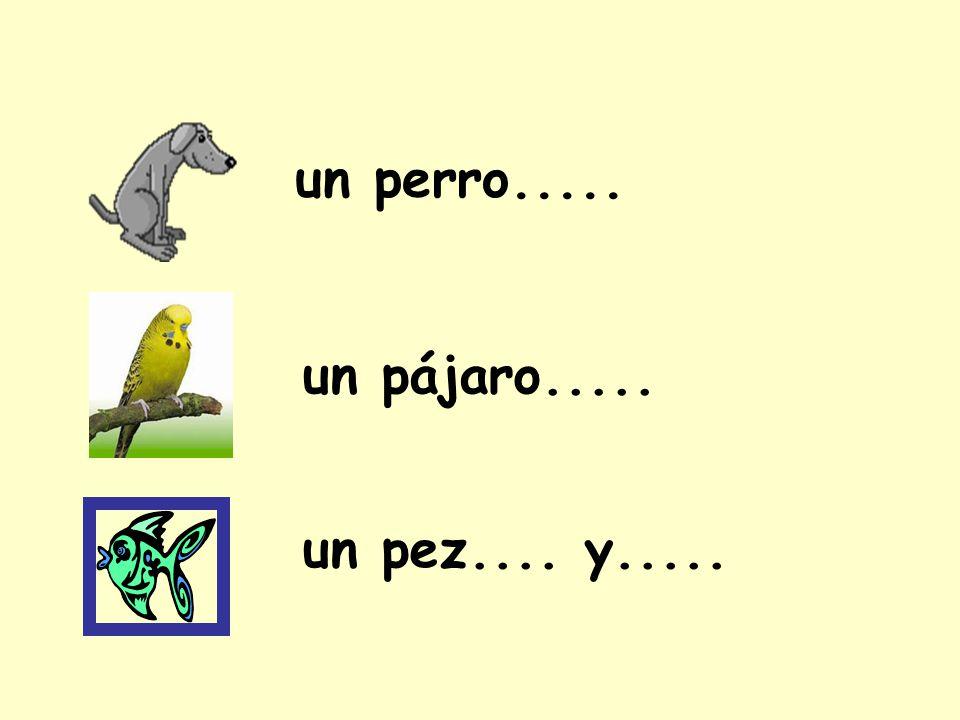un perro..... un pájaro..... un pez.... y.....