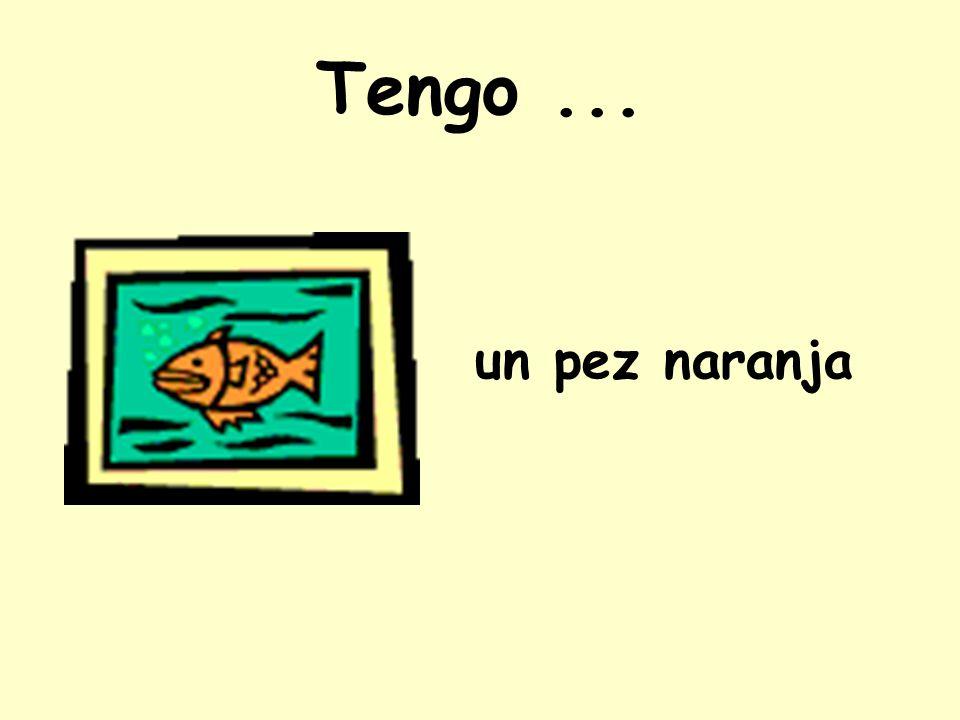 Tengo ... un pez naranja