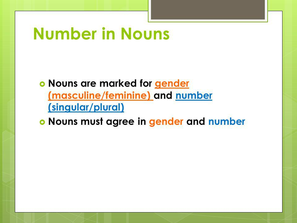 Number in Nouns Nouns are marked for gender (masculine/feminine) and number (singular/plural) Nouns must agree in gender and number.